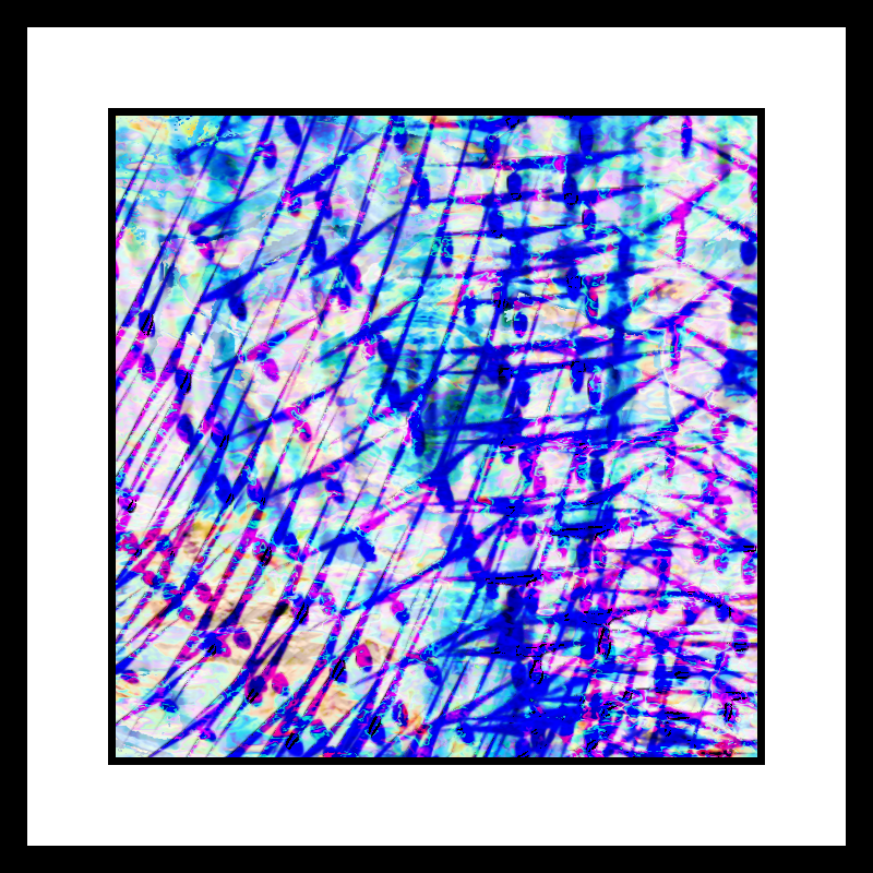 FQDBBT_Series003