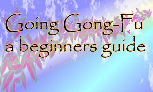 Going Gong-Fu: Teapots for beginners.