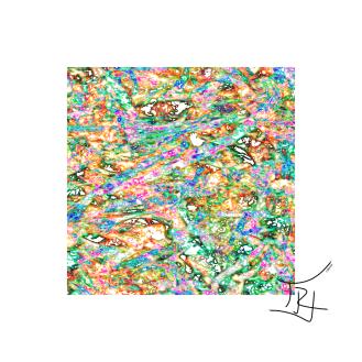 LEOP1_series001_04232019